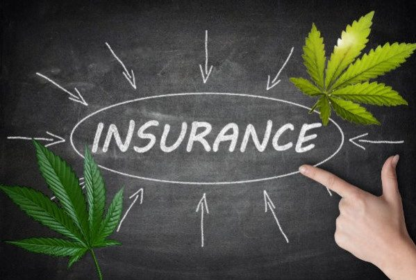 cannabis-product-liability-insurance
