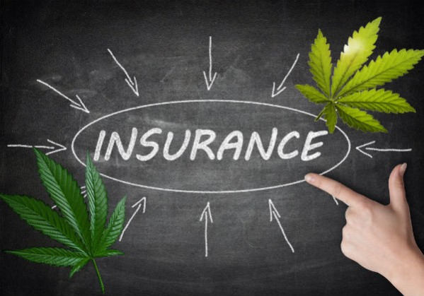 California Medical Marijuana Dispensary Insurance